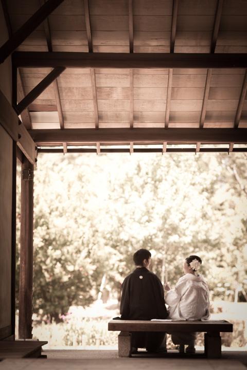 hamarikyu_photowedding011